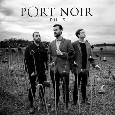 portnoir_puls